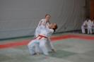 Ju Jitsu Prüfungsmarathon erfolgreich gemeistert