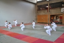 Zum Saisonabschluss haben die Kinder der Ju Jitsu Abteilung ihr Können bewiesen