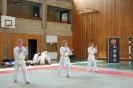 65 Ju Jitsuka meisterten die Prüfung zum nächsten Grad