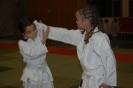 Ju Jitsuka-Kinder präsentierten erfolgreich ihr Können