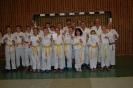Kinder, Jugendliche und Erwachsene meistern Ju Jutsu-Sportabzeichen